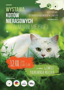 Gliwice: Wystawa Kotów Nierasowych @ Gliwice | Polska