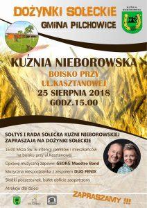 Kuźnia Nieborowska: Dożynki Sołeckie @ śląskie | Polska