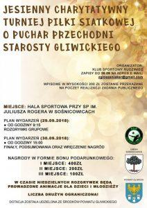 Sośnicowice: Jesienny Charytatywny Turniej Piłki Siatkowej o Puchar Przechodni Starosty Gliwickiego @ Sośnicowice | śląskie | Polska