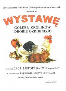 MOSiR Knurów: Wystawa gołębi, królików i drobiu ozdobnego @ Knurów | śląskie | Polska