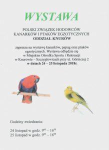 MOSiR Knurów: Wystawa kanarków, papug oraz ptaków egzotycznych @ Knurów | śląskie | Polska