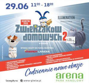 PH Arena Gliwice: Sekretne życie zwierzaków domowych