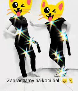 Ornontowice: Koci Bal