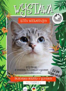 Gliwice: Wystawa Kotów Nierasowych w Palmiarni