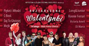 Arena Gliwice: Roztańczone Walentynki