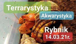 Rybnik: Akwarystyka i Terrarystyka