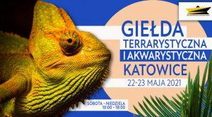 Katowice: Giełda Terrarystyczna i Akwarystyczna w Spodku