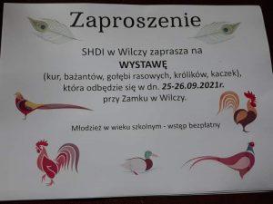 Pilchowice/Wilcza: Wystawa królików, kur, bażantów, gołębi i kaczek